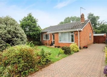 Thumbnail 3 bed bungalow for sale in Winston Gardens, Poole