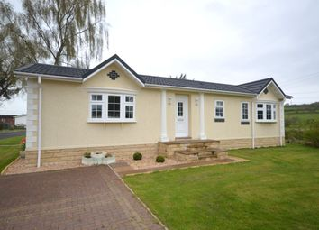 Thumbnail 2 bed bungalow for sale in Beechtree Park, Denny