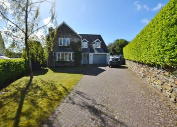 Thumbnail 4 bed detached house to rent in Mill Close, Egloshayle, Wadebridge