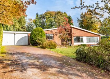 Thumbnail 3 bed detached bungalow for sale in Pine Bank, Hindhead