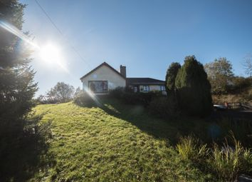 Thumbnail 6 bed detached bungalow for sale in Tynreithyn, Tregaron