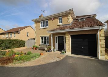 Thumbnail 4 bedroom detached house for sale in Meadow Brook, Roundswell, Barnstaple