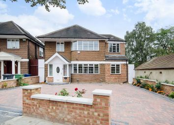 Thumbnail 6 bed property to rent in Ashbourne Road, Ealing