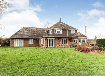 Thumbnail 5 bedroom bungalow for sale in Coolham, Horsham, West Sussex
