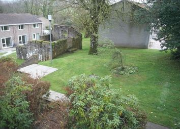Thumbnail 2 bed mobile/park home for sale in Newquay