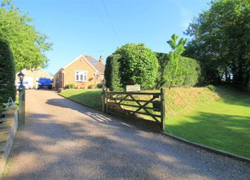 Thumbnail 4 bed detached bungalow for sale in Coolham Road, Brooks Green, Horsham