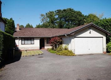 Thumbnail 3 bed detached bungalow for sale in Pinehurst Road, West Moors, Ferndown
