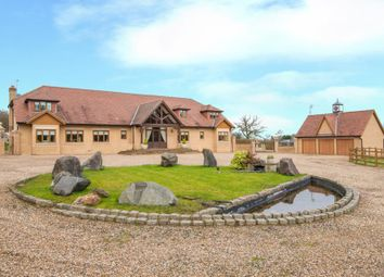 Thumbnail 6 bed equestrian property for sale in White Stubbs Lane, Broxbourne, Hertfordshire