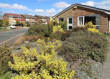 Thumbnail 3 bed bungalow for sale in Walnut Close, Preston