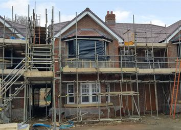 Thumbnail 4 bed semi-detached house for sale in Hollybush Mews, Harpenden, Hertfordshire
