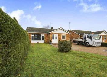 Thumbnail 3 bed bungalow for sale in Beech Avenue, Attleborough