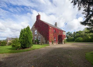 Thumbnail 5 bed detached house to rent in Kirknewton, Wooler