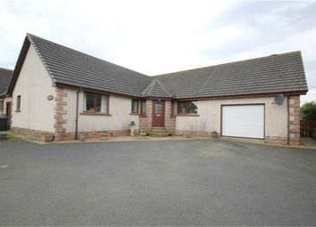 Thumbnail 3 bed detached bungalow for sale in New Deer, New Deer, Turriff, Aberdeenshire