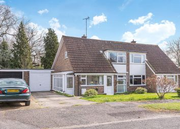 Thumbnail 4 bed property to rent in Elmleigh, Midhurst