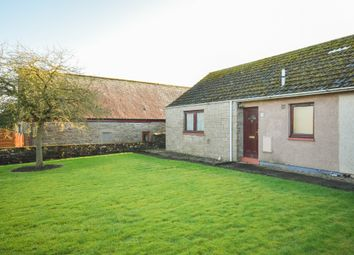 Thumbnail 2 bed bungalow to rent in Mid Row, Lunanhead, Forfar, Angus