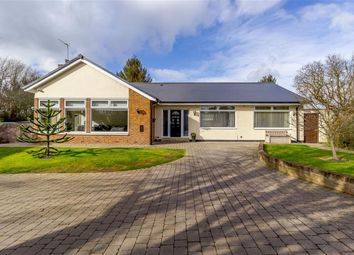 Thumbnail 5 bed detached house for sale in Low Lane, Brookfield, Middlesbrough