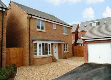 Thumbnail 4 bedroom detached house to rent in Dukes Way, Hampton Vale, Peterborough