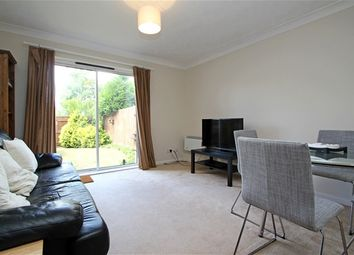 Thumbnail 4 bed property to rent in Winifred Road, London