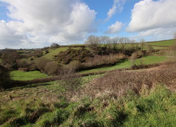 Thumbnail Land for sale in Crowbeare Meadow, Torrington
