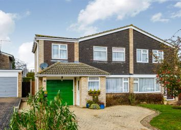 Thumbnail 4 bed semi-detached house for sale in Sherwood Way, Feering, Colchester