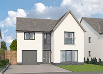 "Thumbnail 4 bedroom detached house for sale in ""The Juniper At Backworth Park"", Backworth, Newcastle Upon Tyne"