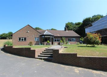 Thumbnail 3 bed detached bungalow for sale in Maidstone Road, Borden, Sittingbourne
