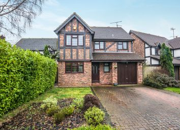 Thumbnail 4 bed detached house to rent in Tiptree Close, Lower Earley, Reading