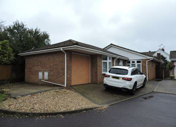 Thumbnail 4 bed detached bungalow to rent in Reeves Orchard, Sturminster Marshall, Wimborne