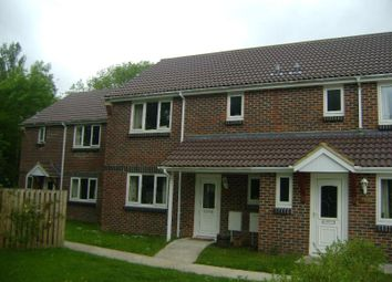 Thumbnail 3 bed semi-detached house to rent in The Causeway, Petersfield GU31, Petersfield,
