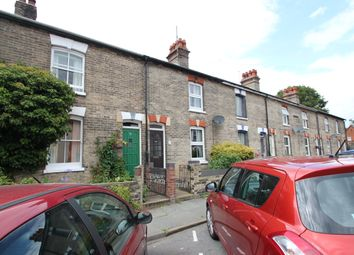 Thumbnail 3 bed terraced house to rent in Myrtle Grove, Colchester