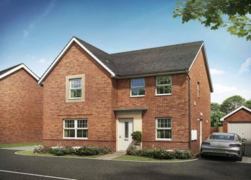 """Thumbnail 4 bed detached house for sale in """"Radleigh"""" at Briggington, Leighton Buzzard"""
