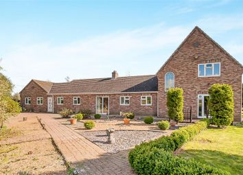 Thumbnail 5 bedroom detached house for sale in Thurlands Drove, Upwell, Wisbech
