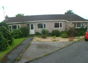Thumbnail 4 bed bungalow to rent in Courtlands Park, Carmarthen