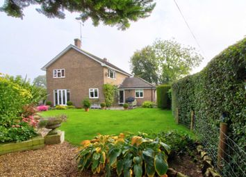 Thumbnail 4 bed detached house for sale in Bugmore Lane, East Grimstead, Salisbury