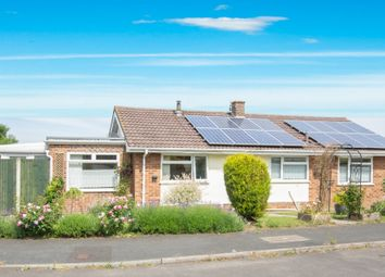 Thumbnail 3 bed bungalow for sale in St Andrews Gardens, Shepherdswell