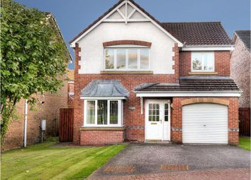 Thumbnail 4 bed detached house for sale in The Muirs, Tullibody, Alloa