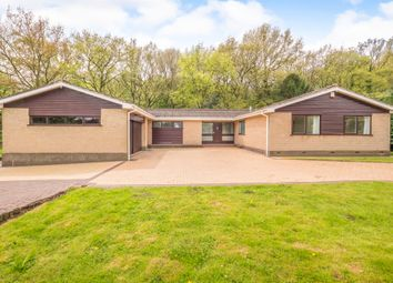 Thumbnail 4 bed detached bungalow for sale in Nottingham Road, Kimberley, Nottingham