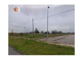 Thumbnail Land for sale in Benavente, Benavente, Benavente