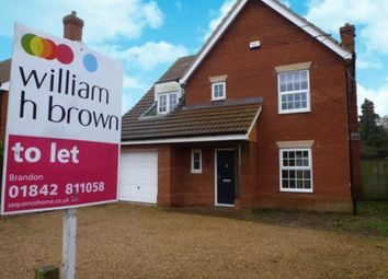 Thumbnail 4 bed detached house to rent in Main Road, Weeting, Brandon