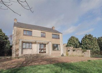 Thumbnail 3 bed equestrian property for sale in Berwick-Upon-Tweed, Northumberland