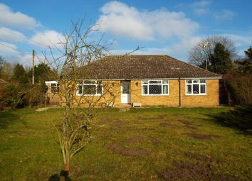 Thumbnail 4 bedroom bungalow for sale in Brookville, Methwold, Norfolk