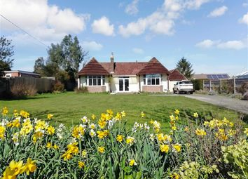 3 bed detached bungalow for sale in Gote Lane, Ringmer, Lewes, East Sussex BN8