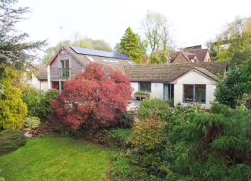 Thumbnail 4 bed detached house for sale in Mynyddbach, Shirenewton, Chepstow