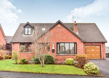 Thumbnail 5 bed detached house for sale in Thornhill, Banbridge