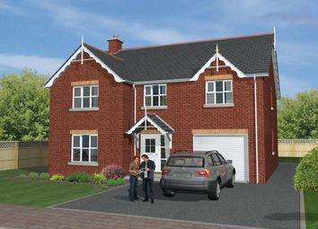 Thumbnail 5 bed detached house for sale in St Andrews Point, Shore Road, Ballyhalbert