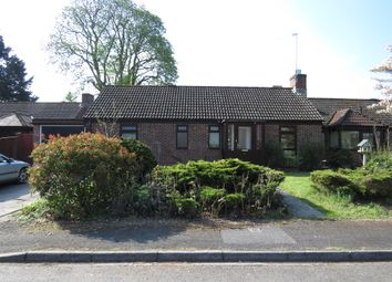 Thumbnail 3 bed detached bungalow for sale in Pembridge Road, Fordingbridge