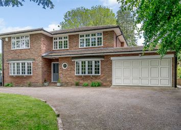 Thumbnail 4 bed detached house for sale in Pantings Lane, Highclere, Newbury, Hampshire
