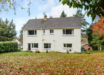 Thumbnail 4 bed detached house for sale in Whitehill, Lampeter, Carmarthenshire