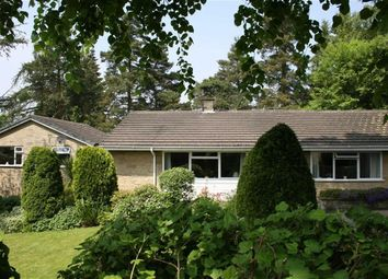 Thumbnail 5 bed detached bungalow for sale in 7, Ashley Close, Tansley Matlock, Derbyshire