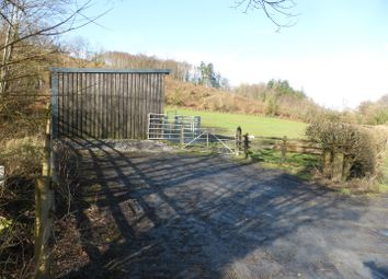 Land for sale in Taliaris, Llandeilo SA19